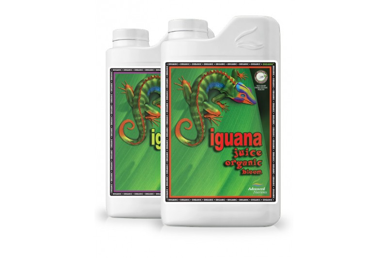 Iguana Juice Bloom Organic